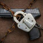What Gun Control Looks Like in 2020