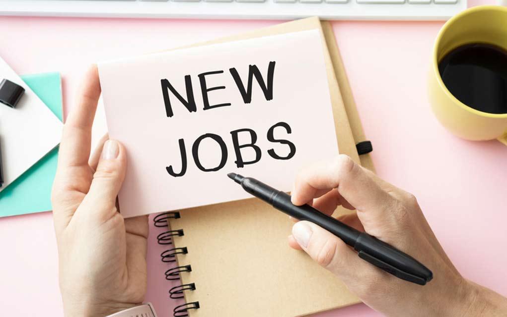President Predicts Unemployment Drop