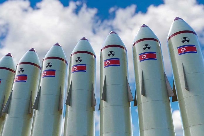 North Korea's Satellite Images Unveil Disturbing Find