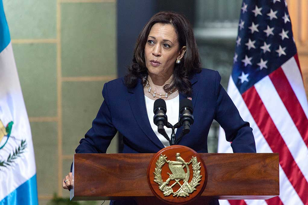 Kamala Harris Faces Criticism Over Ridiculous Voter ID Comments