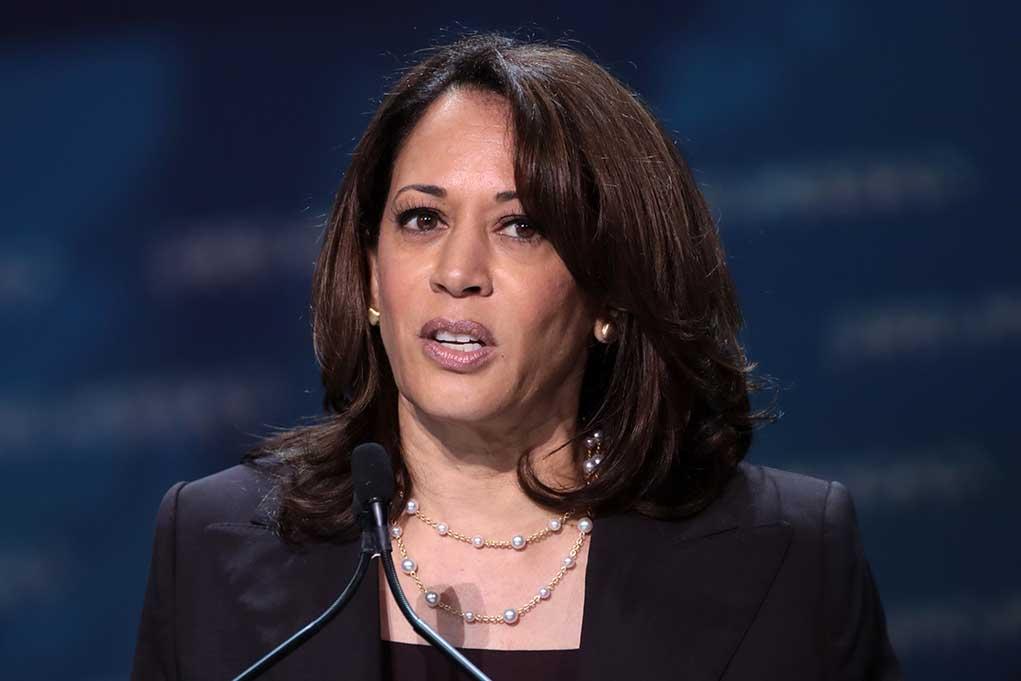 MSNBC Rips Into Kamala Over The Border Crisis
